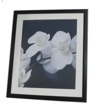 Load image into Gallery viewer, Homeworth   Photo Frames Certificate Frames Black Color