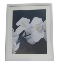Load image into Gallery viewer, Homeworth F30 Photo Frames Certificate Frames Matt Border For A4 A3 A2 4X6 5X7 8X10 11X14 12X16 16X20 20X24 24X36