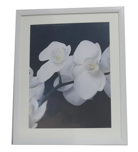 Homeworth F30 Photo Frames Certificate Frames Matt Border For A4 A3 A2 4X6 5X7 8X10 11X14 12X16 16X20 20X24 24X36