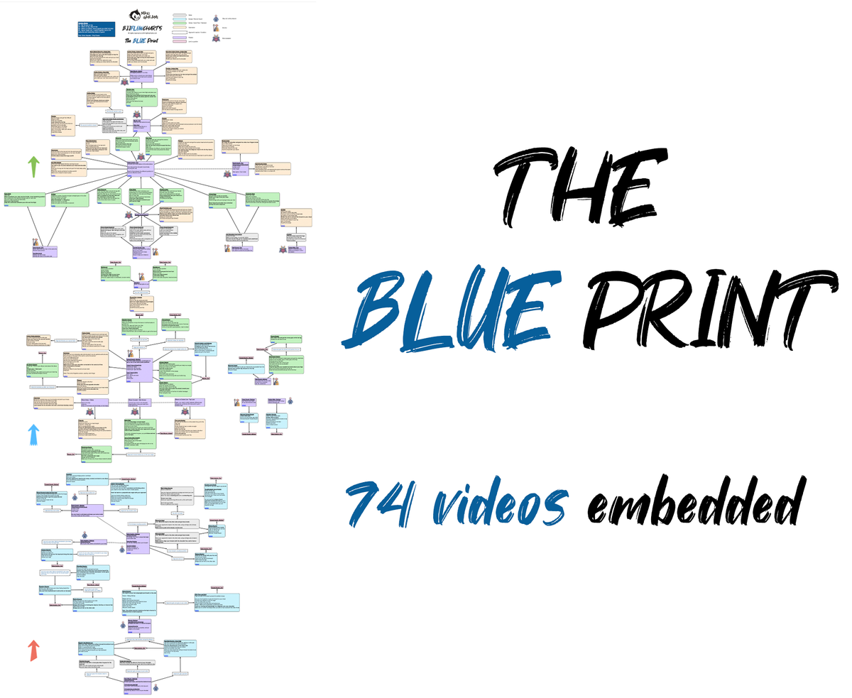 BJJFlowCharts-The Blue Print-A Complete Game for White and Blue Belt with Videos Embedded