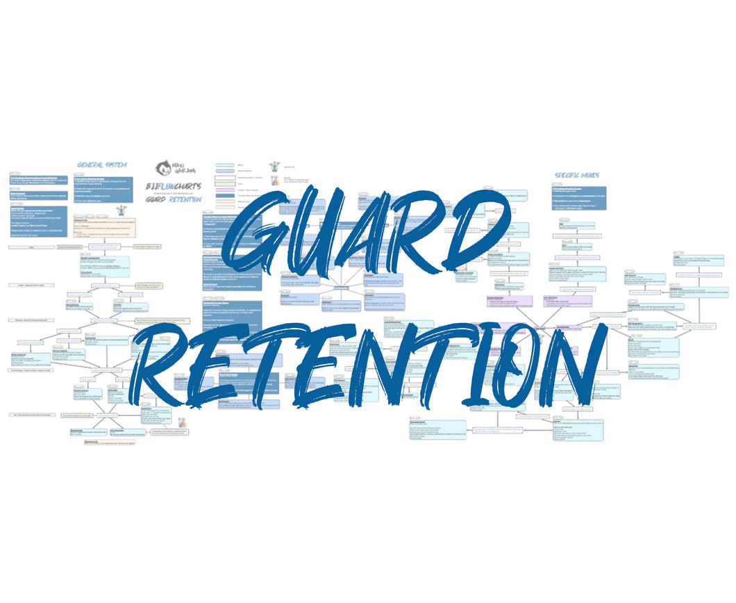 BJJFlowCharts-Flow Chart of Danaher's Guard Retention Jiu-Jitsu System