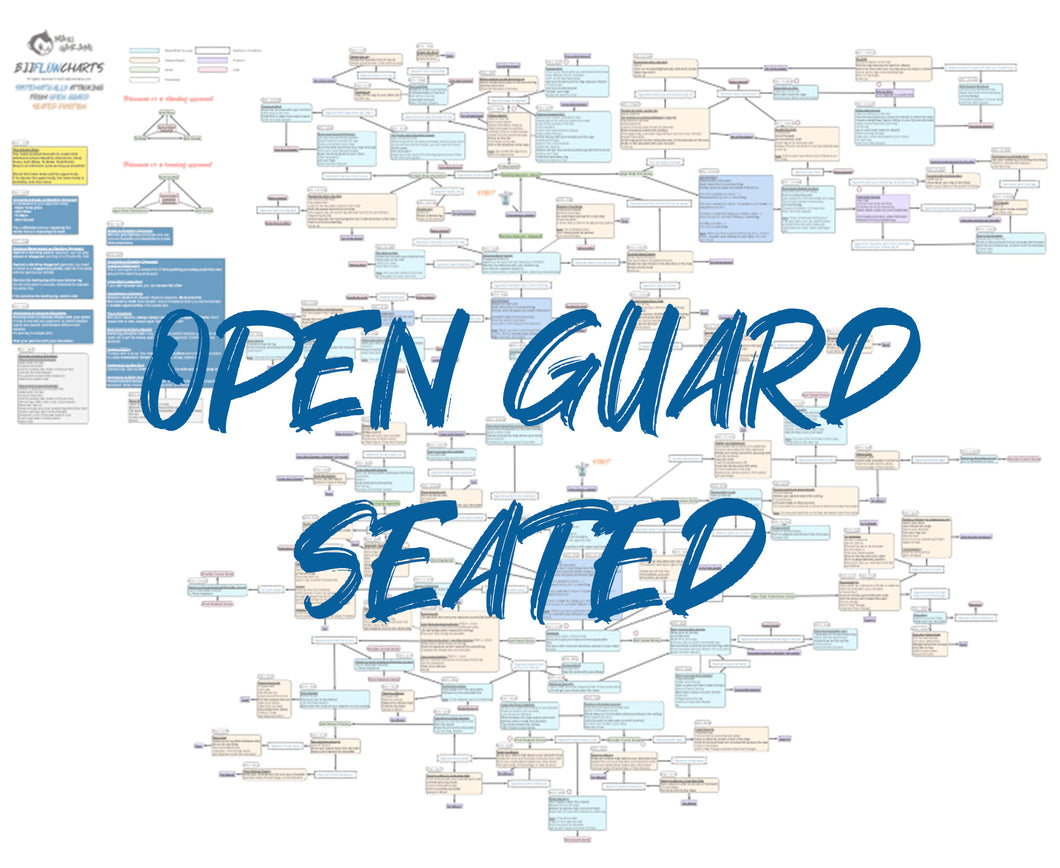BJJFlowCharts-Flow Chart of Gordon Ryan's Open Guard Seated Jiu-Jitsu System