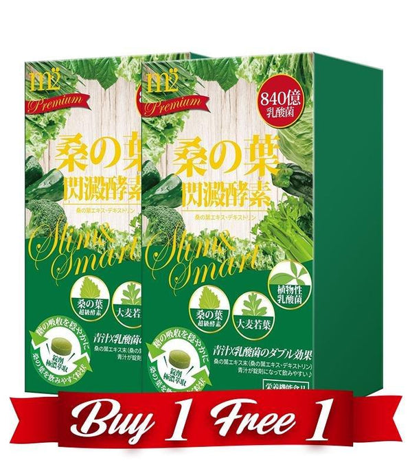 【Bundle of 2】 M2 MULBERRY LEAVES METABOLISM ENZYME TABLET 80s/BOX - SlimBig