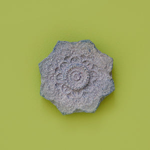 The Zodiac Mandala - Bath Bomb 135g (Limited Edition)