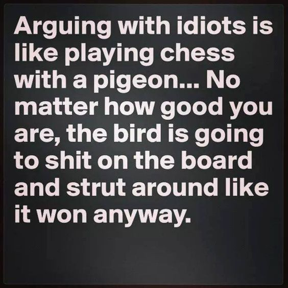 Arguing With Idiots is a custom made funny top quality sarcastic t-shirt that is great for gift giving or just a little laugh for yourself