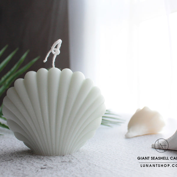 Giant Seashell