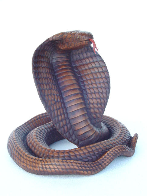 Cobra Brown (Lifesize)