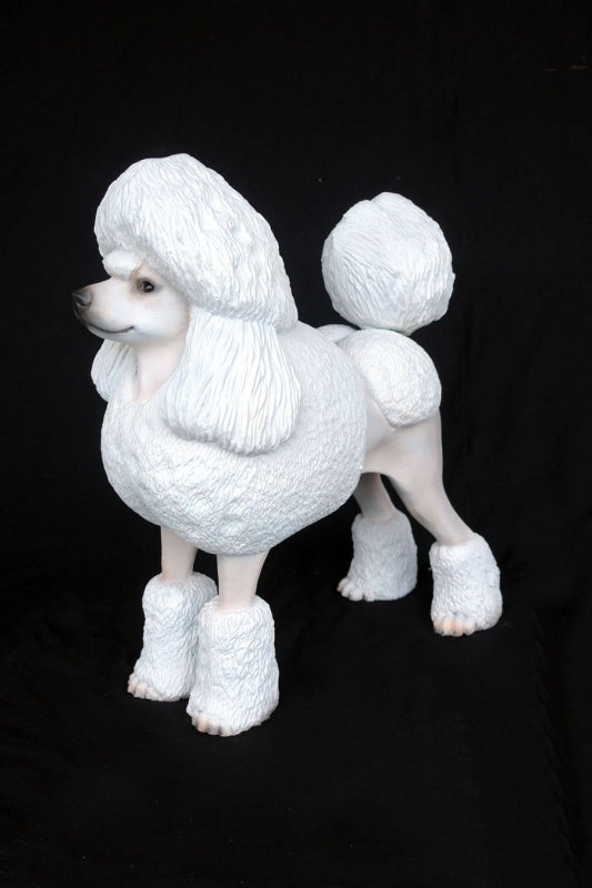 Poodle White (Lifesize)