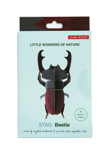 Wall Decoration - Stag Beetle