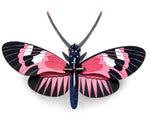 Wall Decoration - Longwing Butterfly