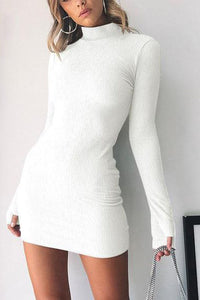 Long Sleeve High Collar Slim Dress