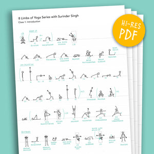 Visual Class Overviews – '8 Limbs of Yoga' course by Surinder Singh - Eva-Lotta's Shop