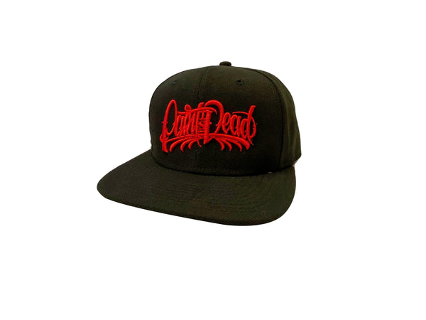 "Snapback Hat with Red ""Paint Is Dead"" logo - Paint is Dead Merchandise"