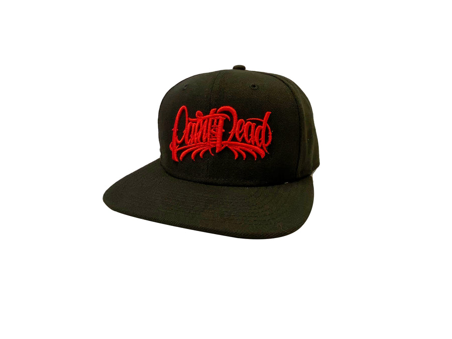 Snapback Hat with Red