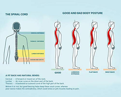 Serious health risks of bad posture and how to prevent them