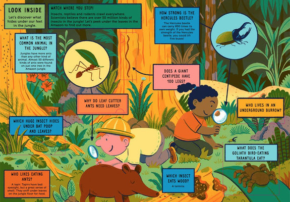 Life On Earth: Jungle: With 100 Questions and 70 Lift-flaps