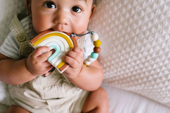 Silicone Teether Holder Set - Neutral Rainbow
