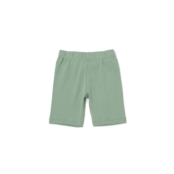 Solid Bike Shorts - Celadon