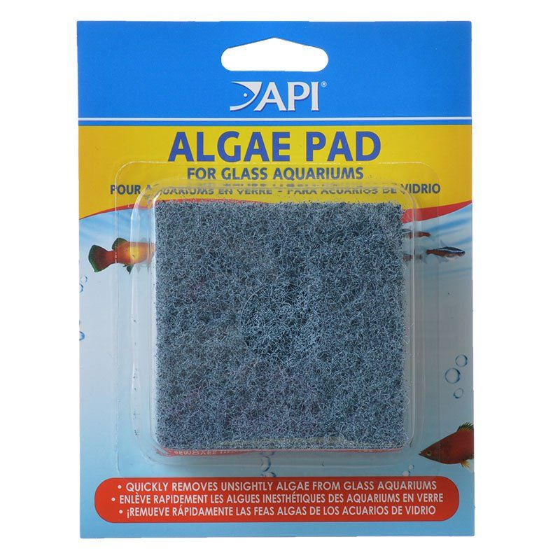 API Doc Wellfish's Hand Held Algae Pad for Glass Aquariums