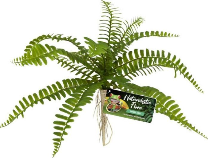 Zoo Med Naturalistic Flora Sword Fern