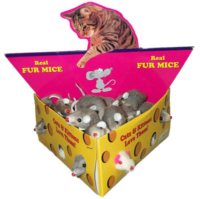 AMAZING Cat Fur Mouse in Cheese Box 2in 48 Piece