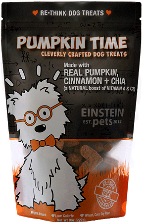 EINSTEIN PETS Pumpkin Time 2oz