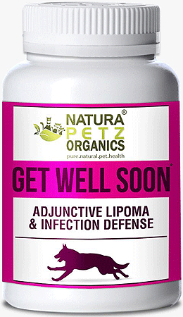 NATURA PETZ Get Well Soon 90ct