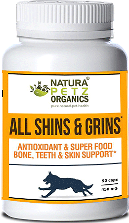 NATURA PETZ All Shins & Grins 90ct