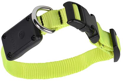 NITE IZE Nite Dawg Collar Yellow XS
