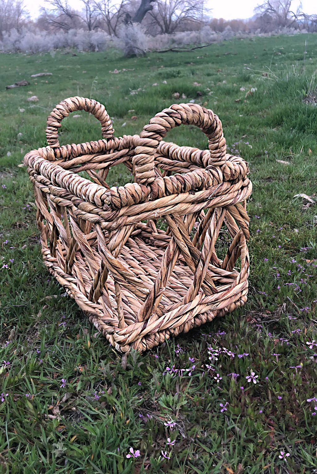 """Whole Lotta Love"" Boho Baskets"