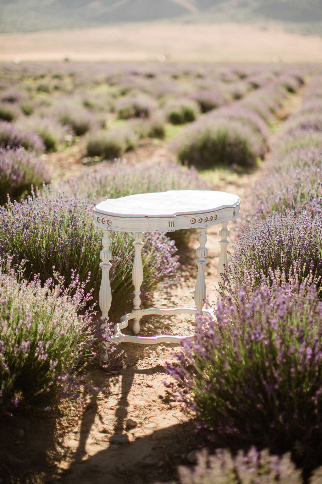 Ivory and gold vintage table in lavender field