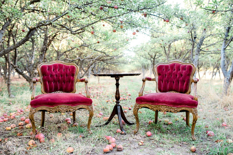 Vintage red velvet chairs in apple orchard