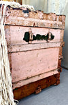 Antique pink trunk