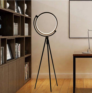 Halo Ring Floor Lamp