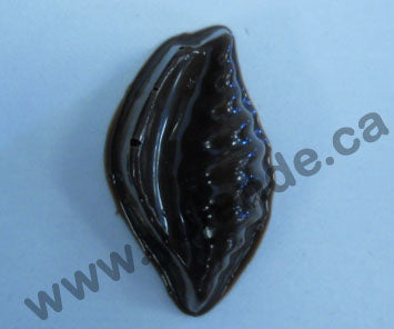 Moule à chocolat - Assortiments de coquillages (20) - Bouchée - Mer (B-A76)