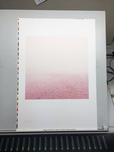 Elbe (rosa) - The Pink River  - A Poster