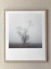 Load image into Gallery viewer, BAUM 1621-6 Signed C-Print