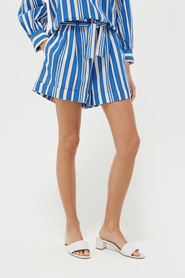 Blue Striped Parasol Shorts image 4