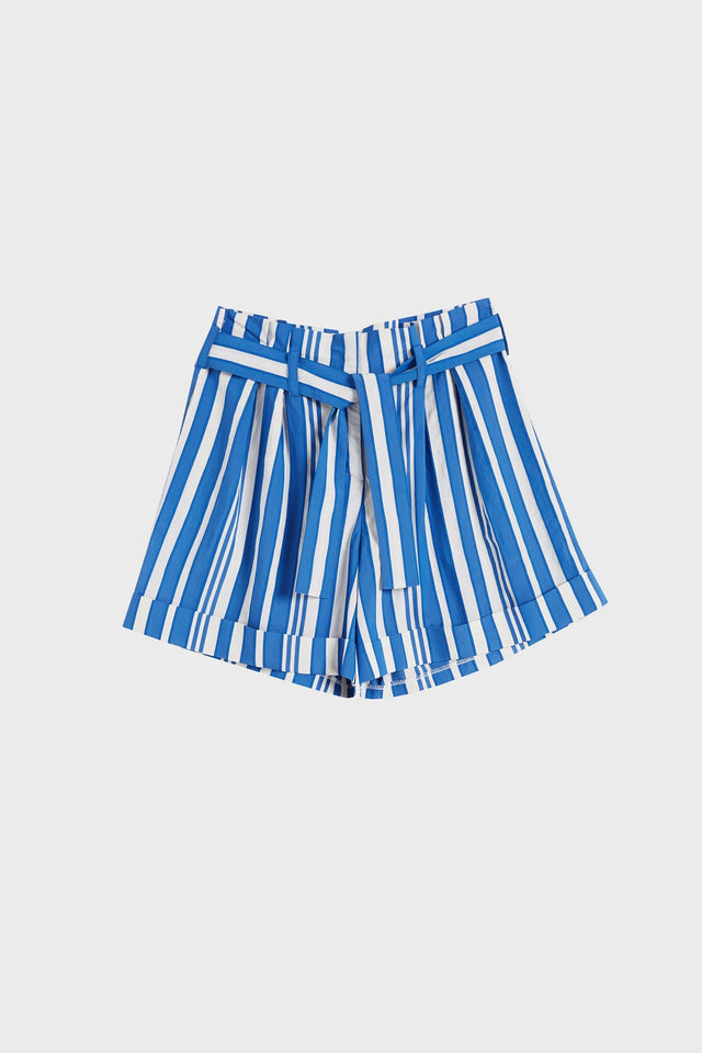 Blue Striped Parasol Shorts image 2