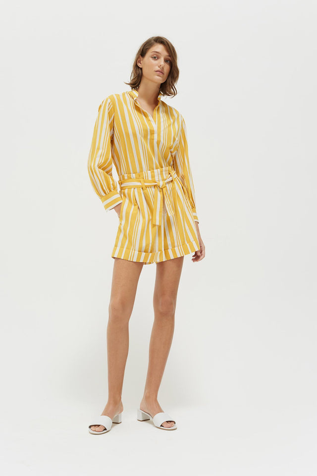 Yellow Striped Parasol Shorts image 4