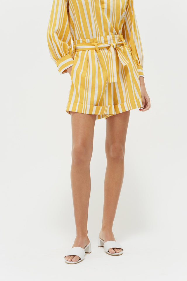 Yellow Striped Parasol Shorts image 1
