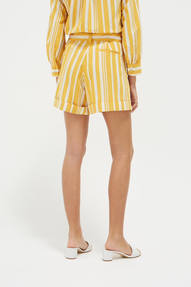 Yellow Striped Parasol Shorts image 5