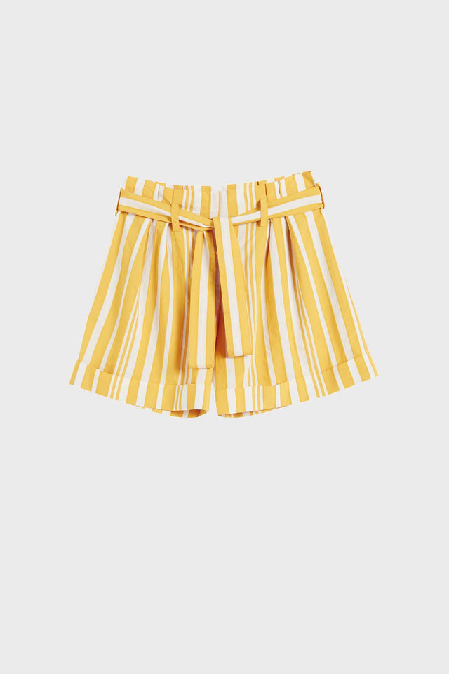 Yellow Striped Parasol Shorts image 2