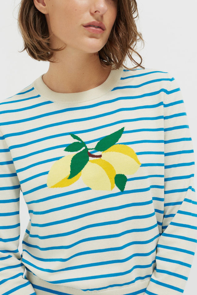 Blue Stripe Lemon Sweater image 4
