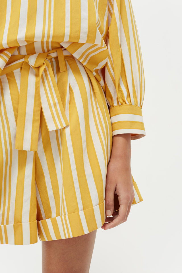 Yellow Striped Parasol Shorts image 3