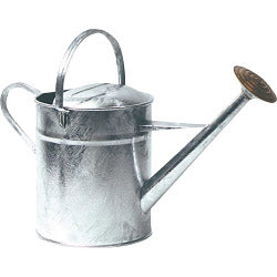 2 Gallon Galvanised Watering Can with Rose