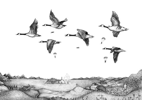 the Arrival of the Canada geese