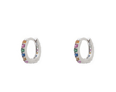Rainbow Warrior Hoop Earring