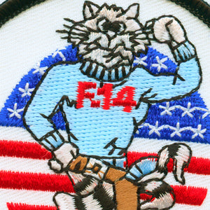 USN Tomcat Anytime Patch detail