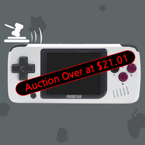 Auction: PocketGo V1 Console